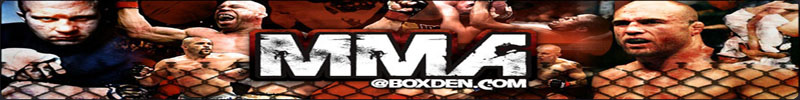 MMA presented by BX